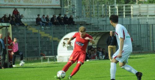 Ballardini Elia DCS 1233