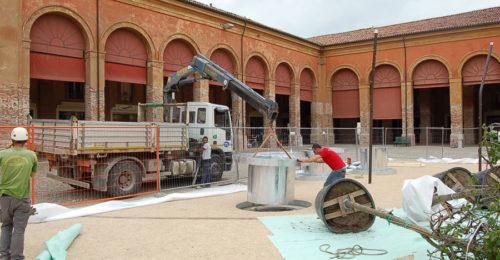 La Messa A Dimora Degli Alberi In Piazza Mazzini (1)