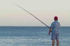 Diga Foranea Pesca