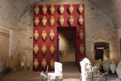 Maf Museo Archeologico Forlimpopoli 06