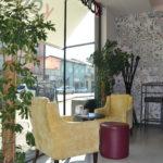 Bar Konnubio, Lugo