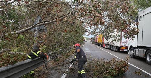La Romea chiusa per gli alberi caduti
