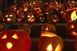 Hungry History The Halloween Pumpkin An American History E