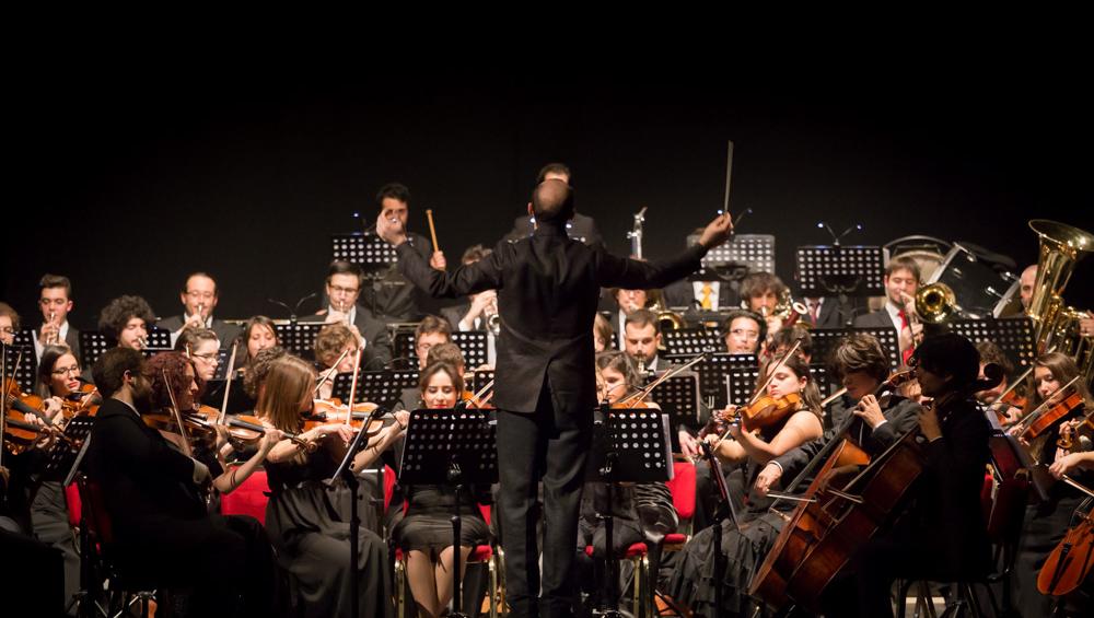 Orchestra Senzaspine (Massimiliano Donati)