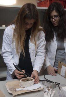 28 Ð02 2018 Ravenna Universitˆ Fond Flaminia , Beni Culturali Dipartimento Di Archeologia Nuovi Laboratori