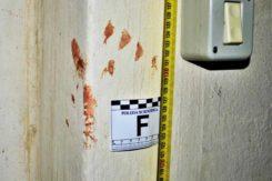 Impronta5