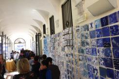 Mostra Blue Del Cavolo