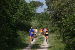 Trail Ra Mima