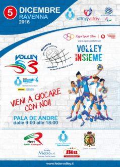 Locandina Volley Insieme