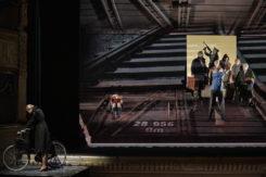 Viaggio Di Roberto©Zani Casadio 1565