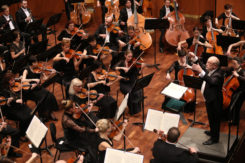 Miskolc Symphony Orchestra