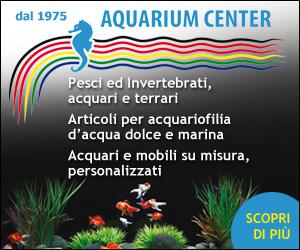 AQUARIUM CENTER – HOME BILLB TOP 22-31 07 19