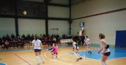Liverani Castellari 24.2.2019