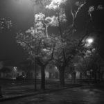 """Piazza Garibaldi (Lorenzo Tugnoli, dalla serie """"La notte e lo zen"""", nell'ambito del progetto Lugo Land 2009, a cura di Luca Nostri)"""