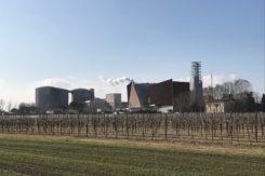 Centrale biomasse russi povwercrop