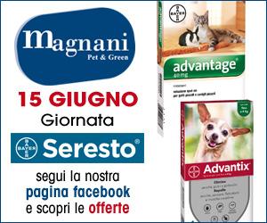 MAGNANI PET & GREEN – HOME MRT 10 – 15 06 19