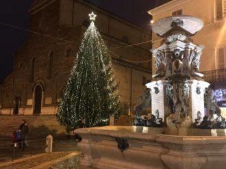 Albero Faenza