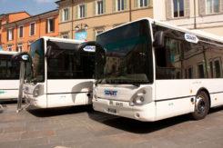 Autobus Piazza