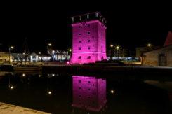 Torre Rosa3