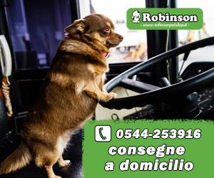 ROBINSON BILLB MID1 09 – 23 04 2020