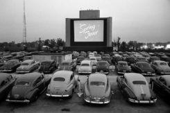 Drive In Cinema Coronavirus Covid 19