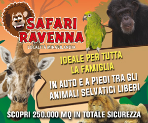 SAFARI RAVENNA BILLB 09 – 15 07 20