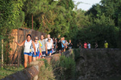 Urban Trail Città D'acque