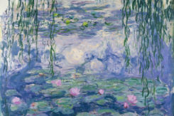 Claude Monet Ninfee 1916 1919 Circa © Musée Marmottan Monet Paris Bridgeman Images