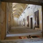 Non Giudicare San Francesco Anteprima IV