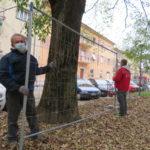 I lavori al parco di piazza Dante, a Faenza