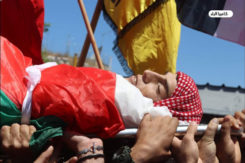 Vittima Di Guerra Palestina
