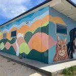 Il Nuovo Rifugio Del Cane Di Faenza (3)
